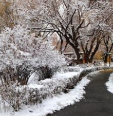 小雪时节的古诗词
