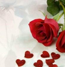 情人节有哪些送礼方式?