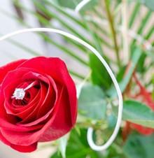 恩爱甜蜜浪漫时尚婚礼祝福语