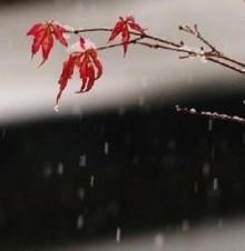 小雪节气的谚语与民谣