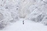 大雪节气时,应该多注意一些身体上的事情。